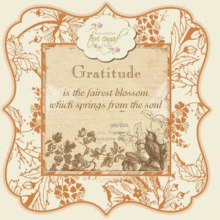 Tcd_gratitudeicon